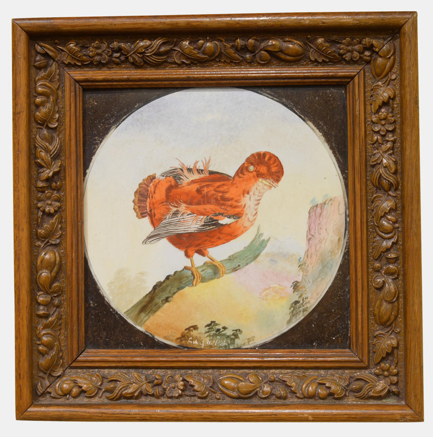 Framed Copeland Tile 'Cock o' the Rock'