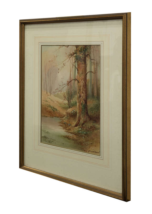 Water colour of woodland scene by Mansell Cowen