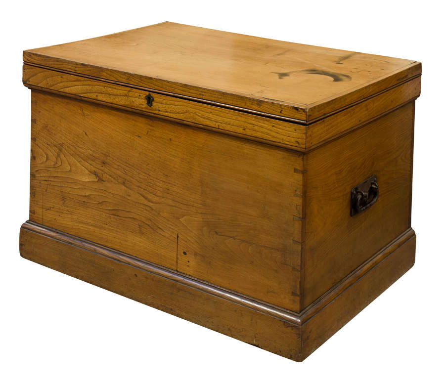 Large Elm Trunk c1880